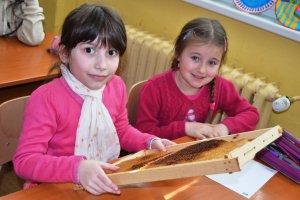 O včielkach a mede v II.A (trieda sovičiek)